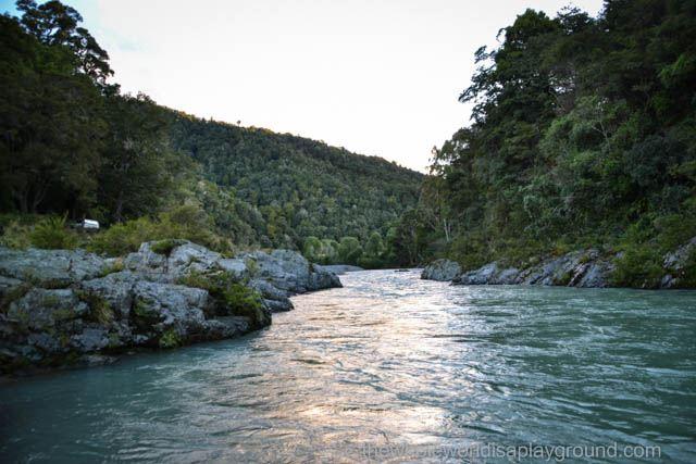 Pelorus Bridge New Zealand