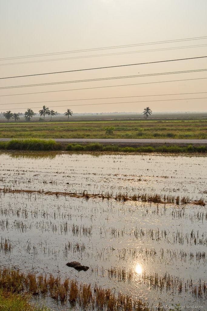 Bangkok to Siem Reap border crossing ©thewholeworldisaplayground