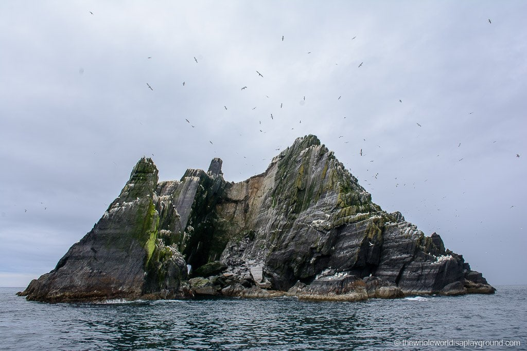 Ireland Visiting Skellig Michael-4