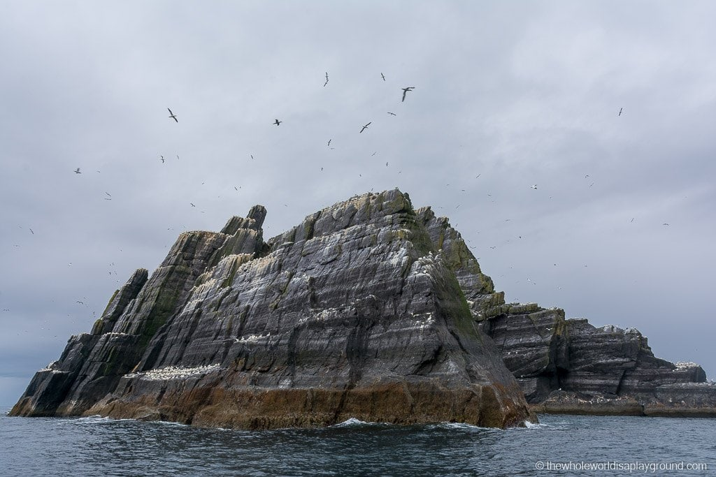 Ireland Visiting Skellig Michael-5