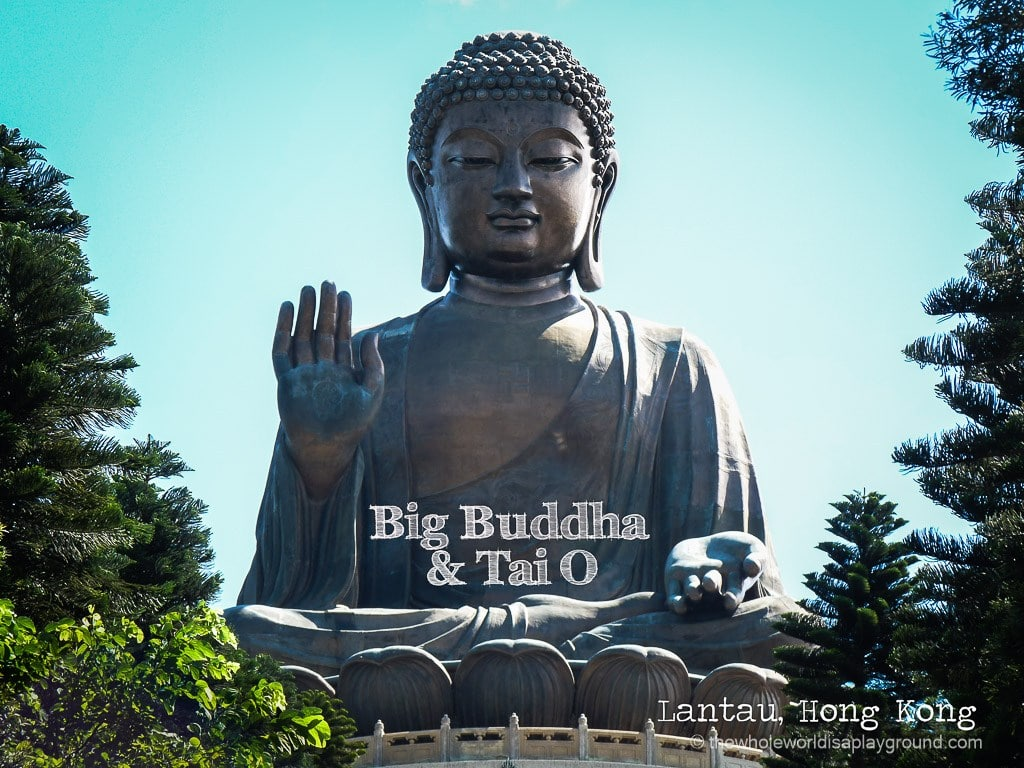 How to get to the Big Buddha and Tai O by public transport: Lantau, Hong Kong