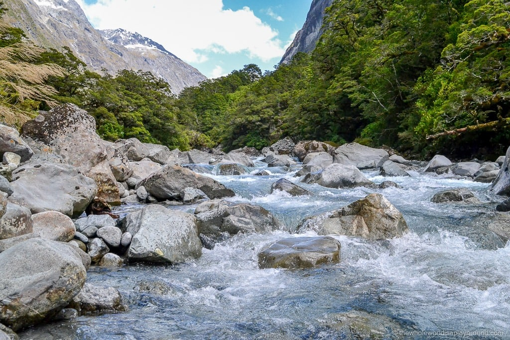 Road to Milford Sound ©thewholeworldisaplayground