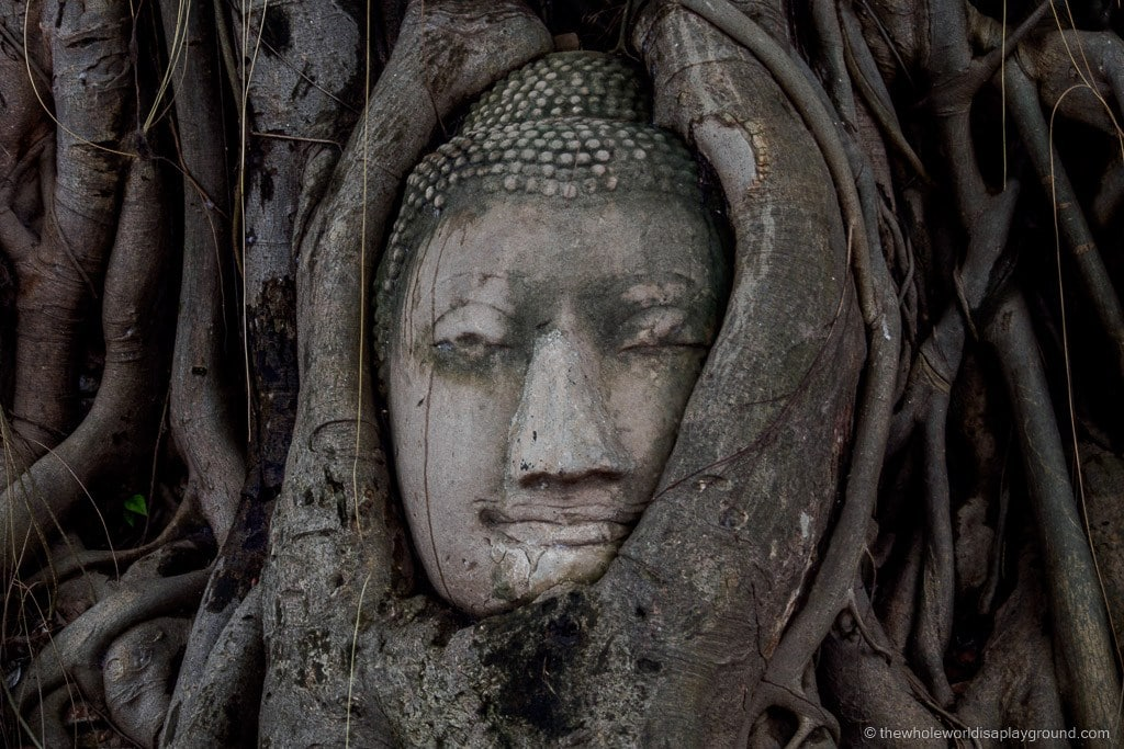 Ayutthaya: a day trip to the ruins of Thailand's old city!
