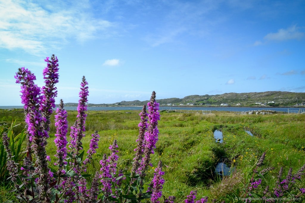 photos to inspire visit Ireland ©thewholeworldisaplayground