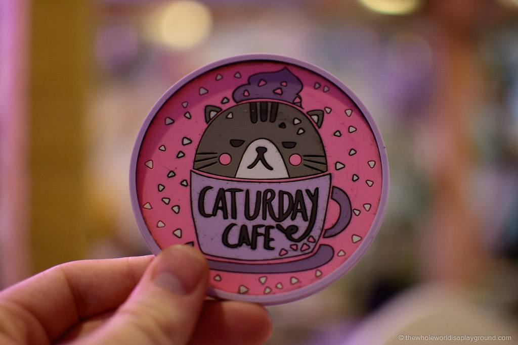 Bangkok Cat Cafe fun! An afternoon at Caturday, Bangkok!