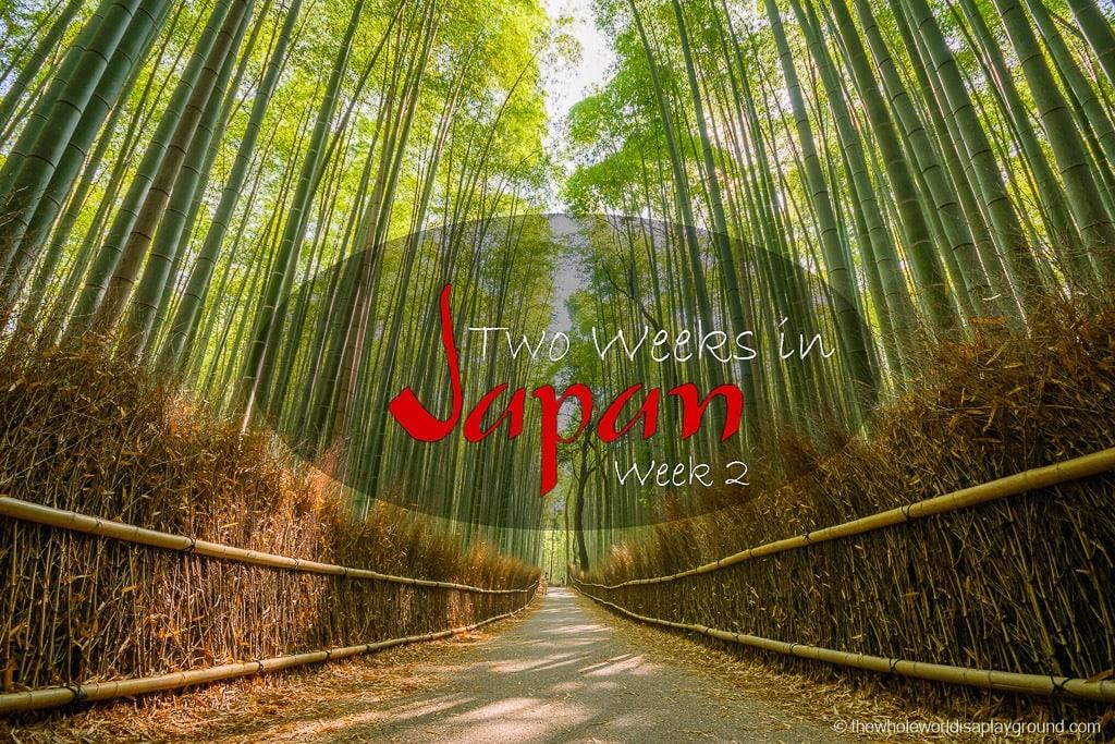 Two Weeks in Japan-86