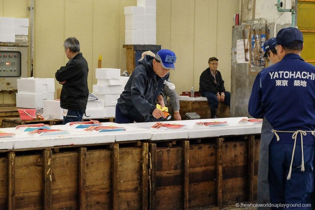 Visit Tsukiji fish market tuna auction Tokyo-12
