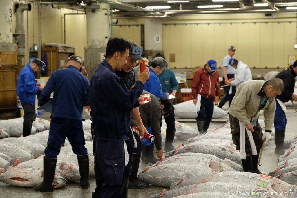 Visit Tsukiji fish market tuna auction Tokyo-28
