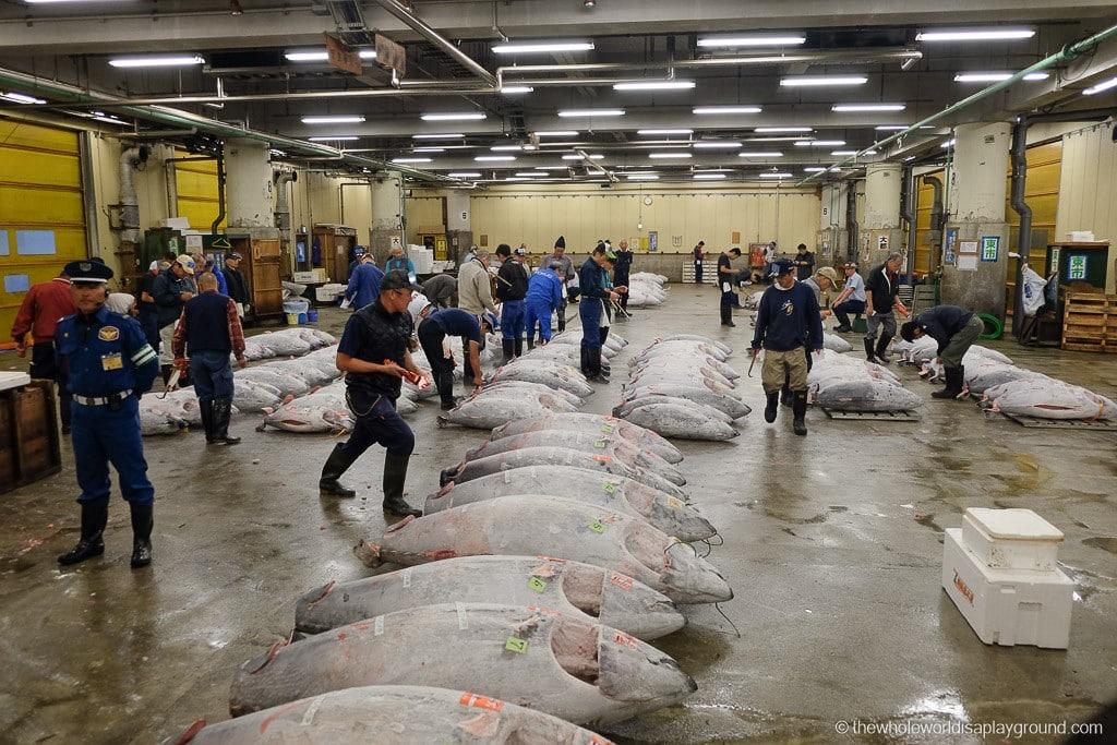 Visit Tsukiji fish market tuna auction Tokyo-30