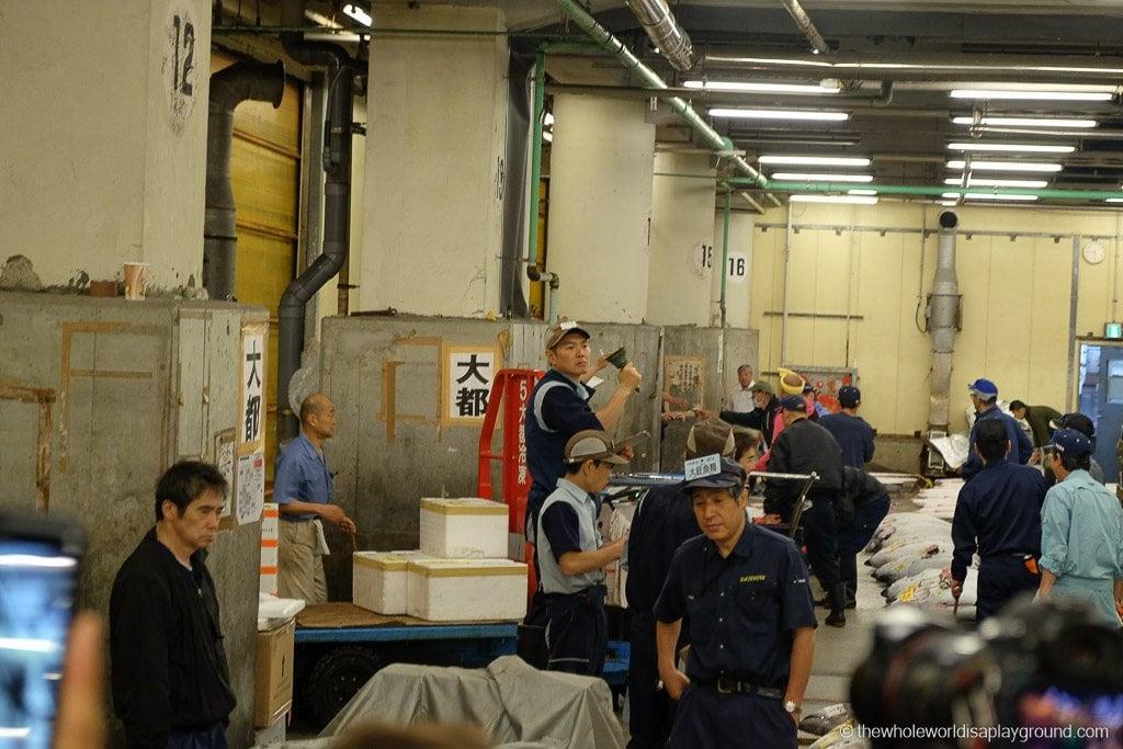 Visit Tsukiji fish market tuna auction Tokyo-35