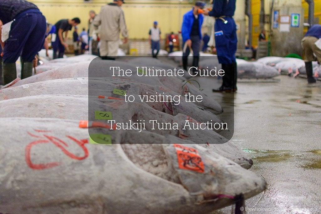 Visit Tsukiji fish market tuna auction Tokyo-49