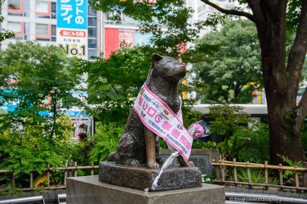 Japan Two Week Itinerary Tokyo-13