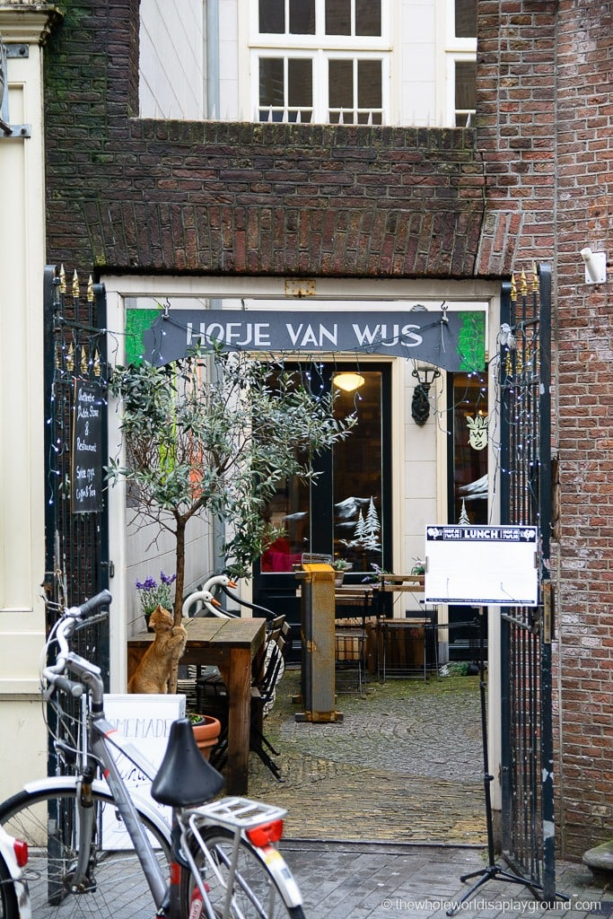 Amsterdam Best Food Must Eat Tourist-10