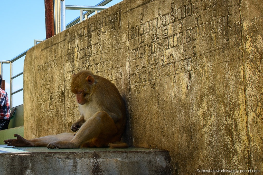 Myanmar Visit Mount Popa-19