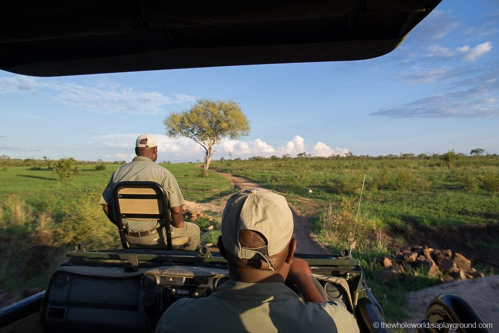 South Africa Kruger Safari Big 5 Best Photos-6