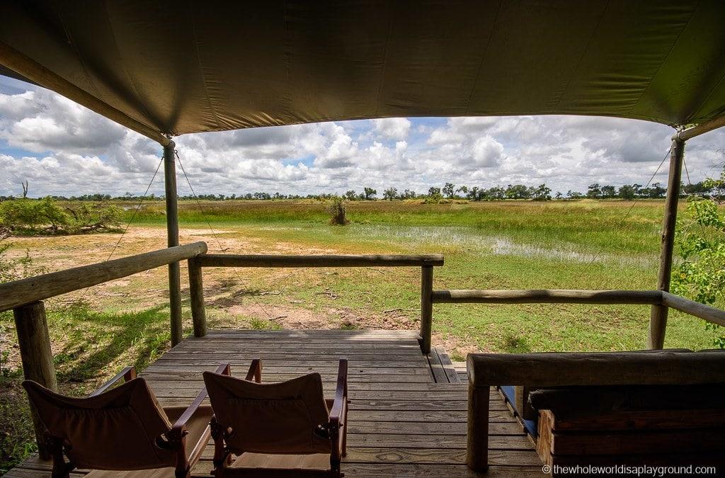 Little Vumbura: Our Wilderness Safaris adventures in the Okavango Delta