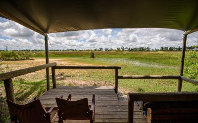 Little Vumbura: Our Wilderness Safaris adventures in the Okavango Delta