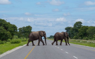 Namibia, Botswana and Victoria Falls: Ultimate self drive road trip itinerary and route