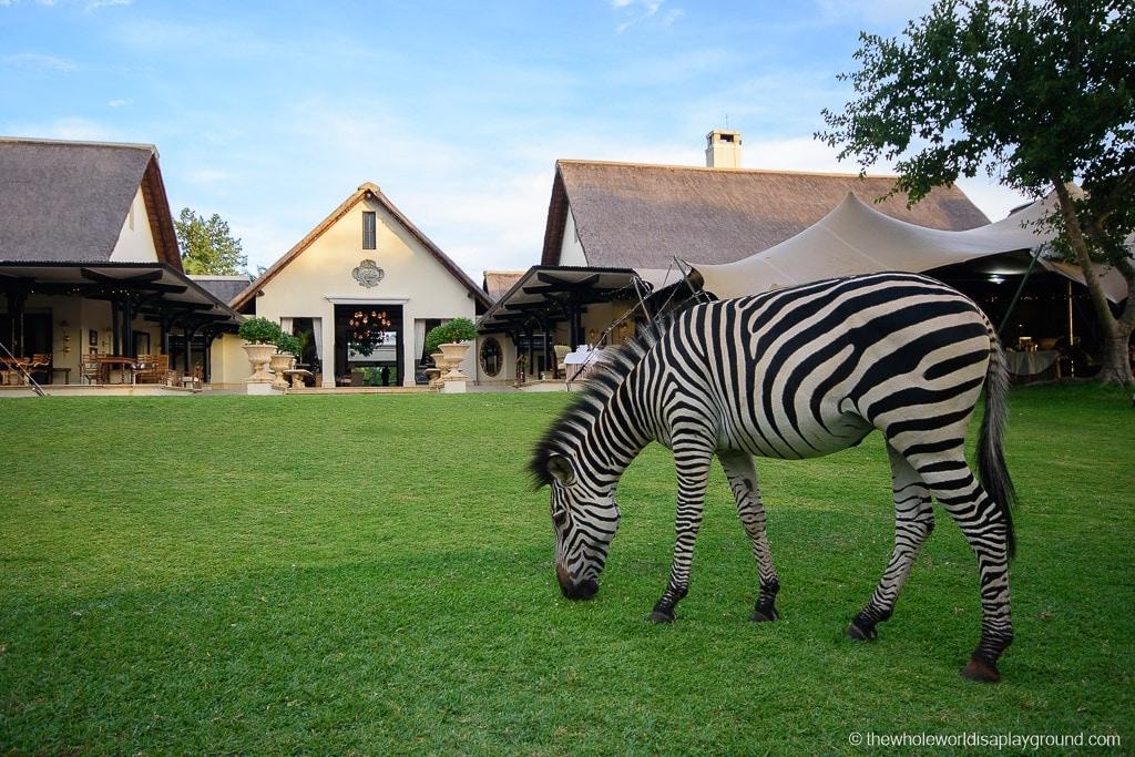 Namibia Botswana Victoria Falls Ultimate Road Trip Itinerary-24