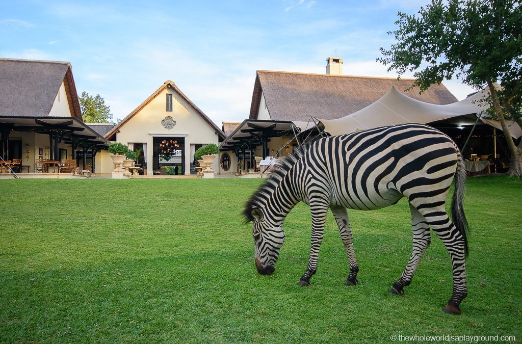 Hotel Review: Royal Livingstone Hotel, luxury at Victoria Falls!