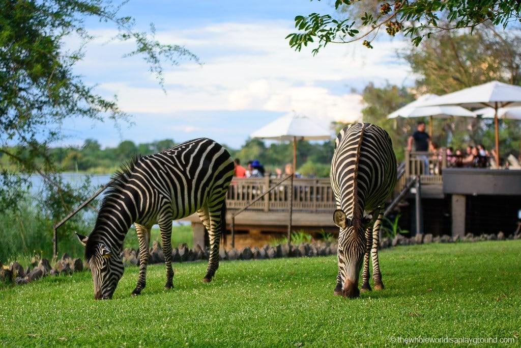 Zambia Victoria Falls Royal Livingston Hotel Review-51