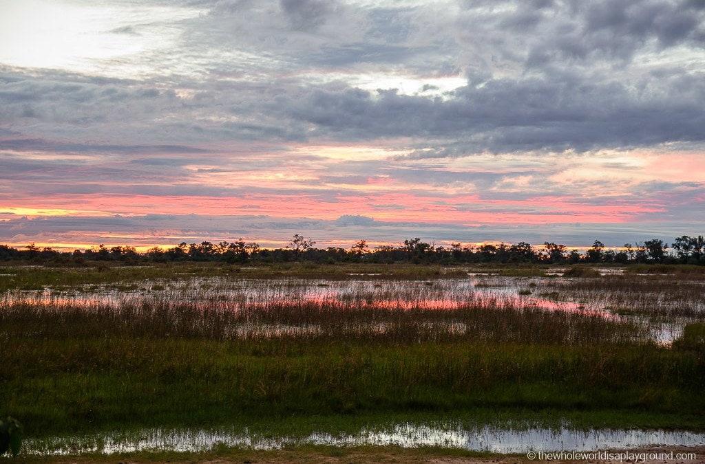 14 magical moments from the Okavango Delta, Botswana!