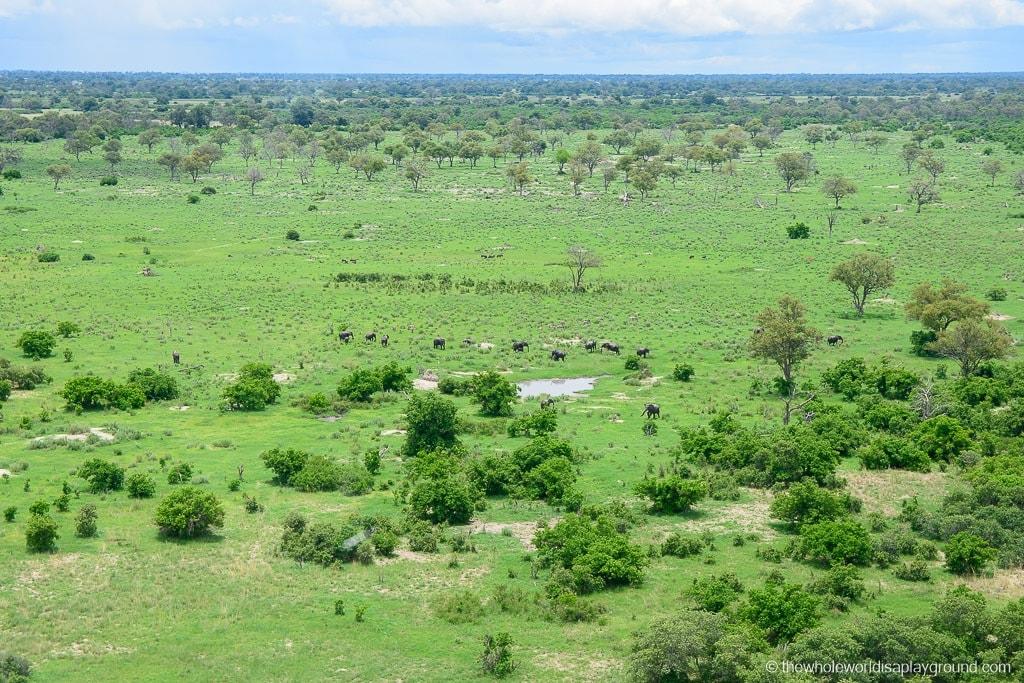 Botswana Okavango Delta Best Moments-3