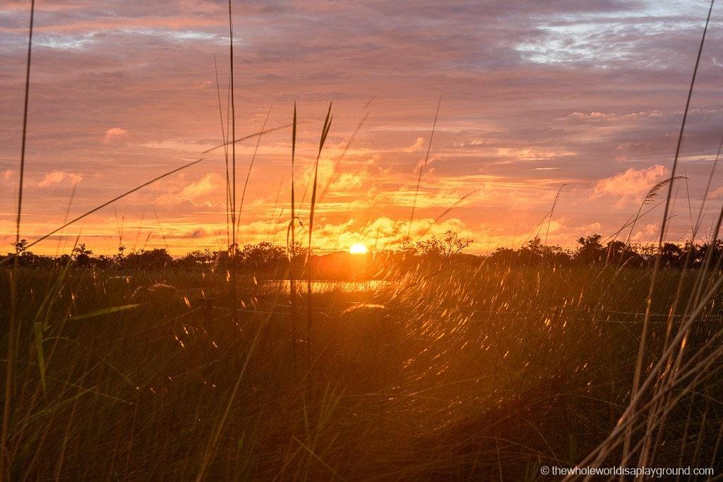 Botswana Safari Day Okavango Delta-15