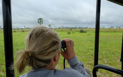 A day in the life of the Okavango Delta: a typical African Safari day!
