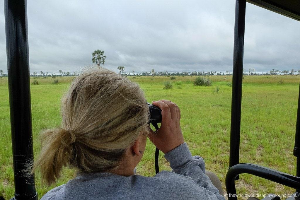 Botswana Safari Day Okavango Delta-33