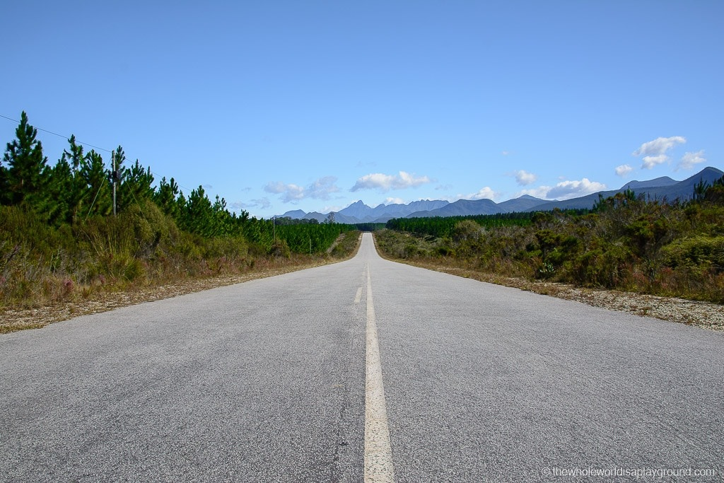 South Africa Road Trip Itinerary-50