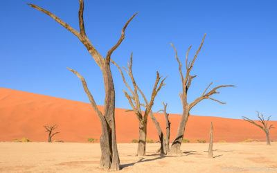 Namibia Itinerary and Self Drive Route
