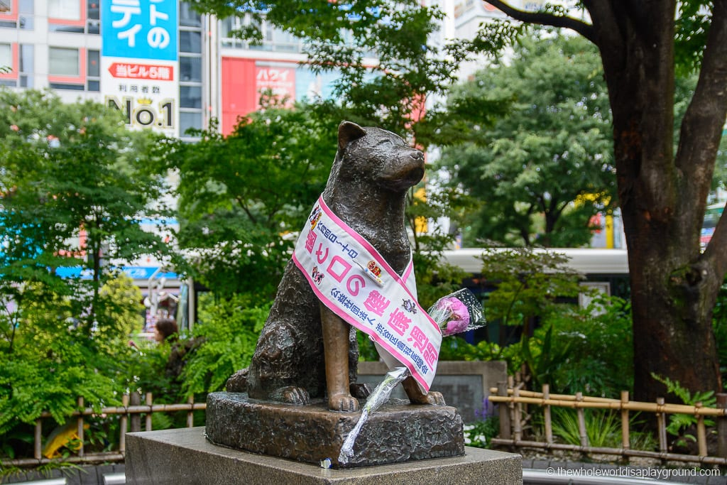 Hachiko things to do in Tokyo