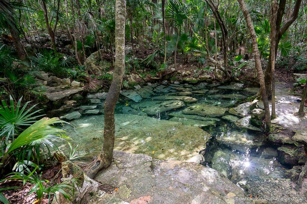 Cenote Azul Playa del Carmen