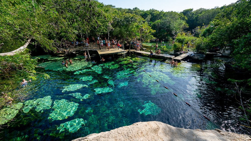 Cenote Azul, Playa del Carmen: Ultimate Guide (2020)