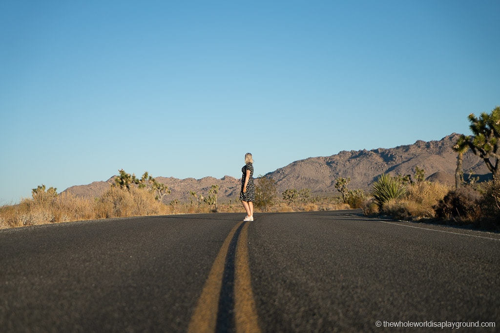 most Instagrammable places in Joshua Tree