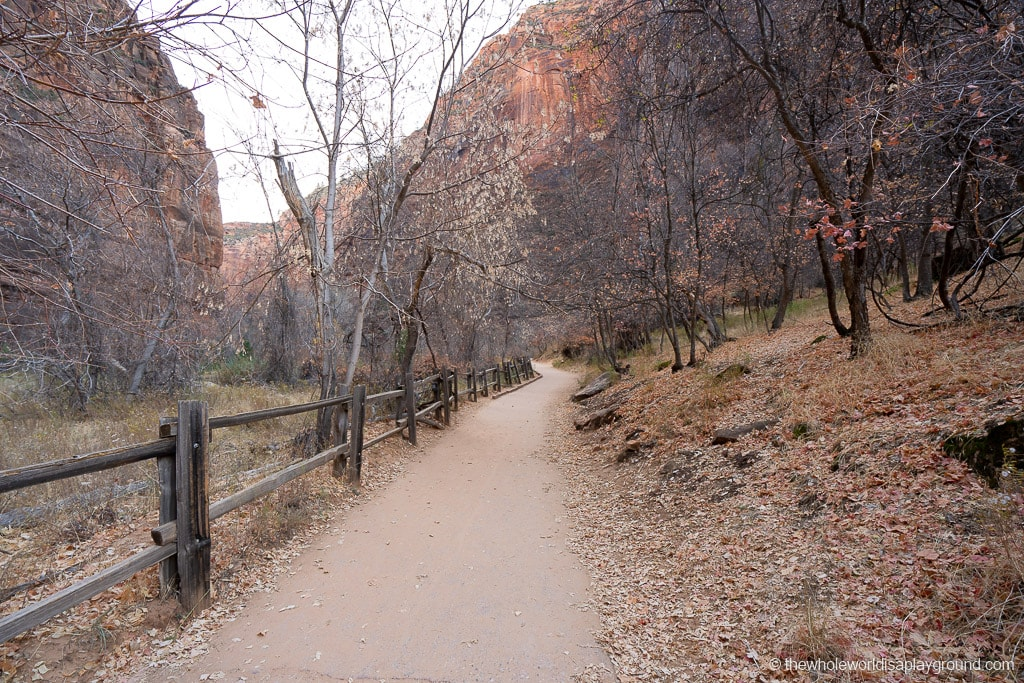 Riverside Walk Hike Zion