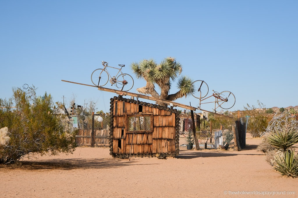 THings to do near Joshua Tree