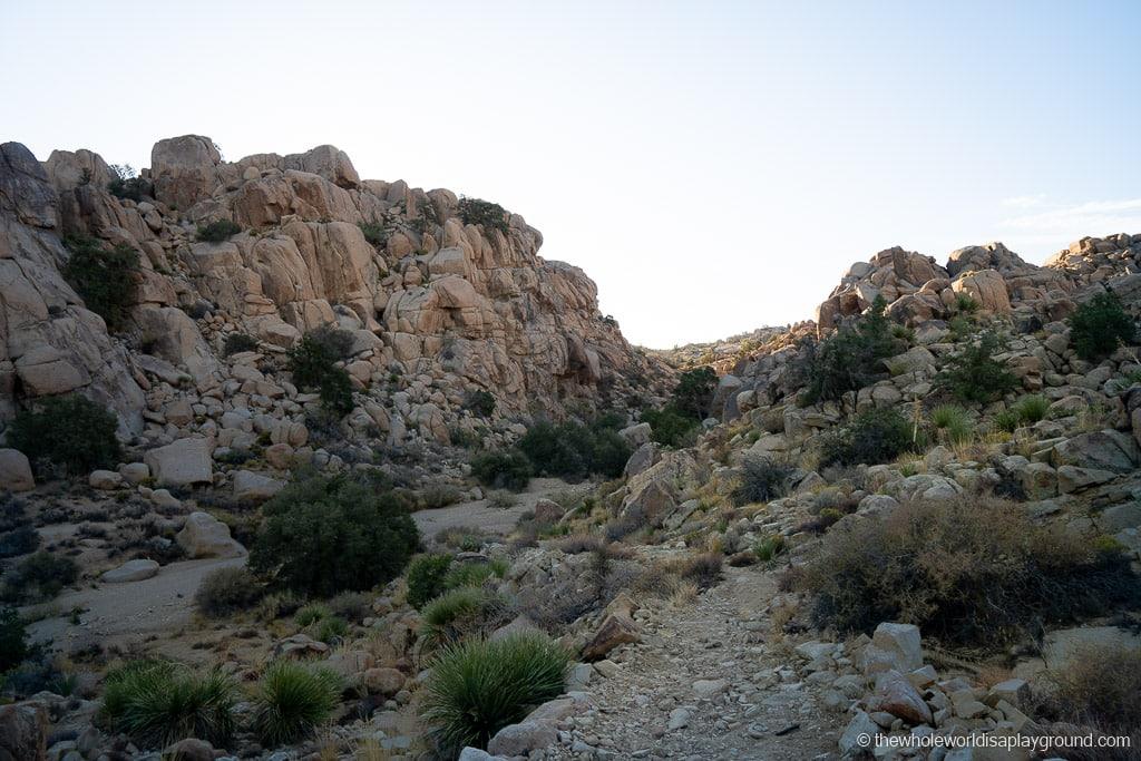 Desert Queen Mine Joshua Tree