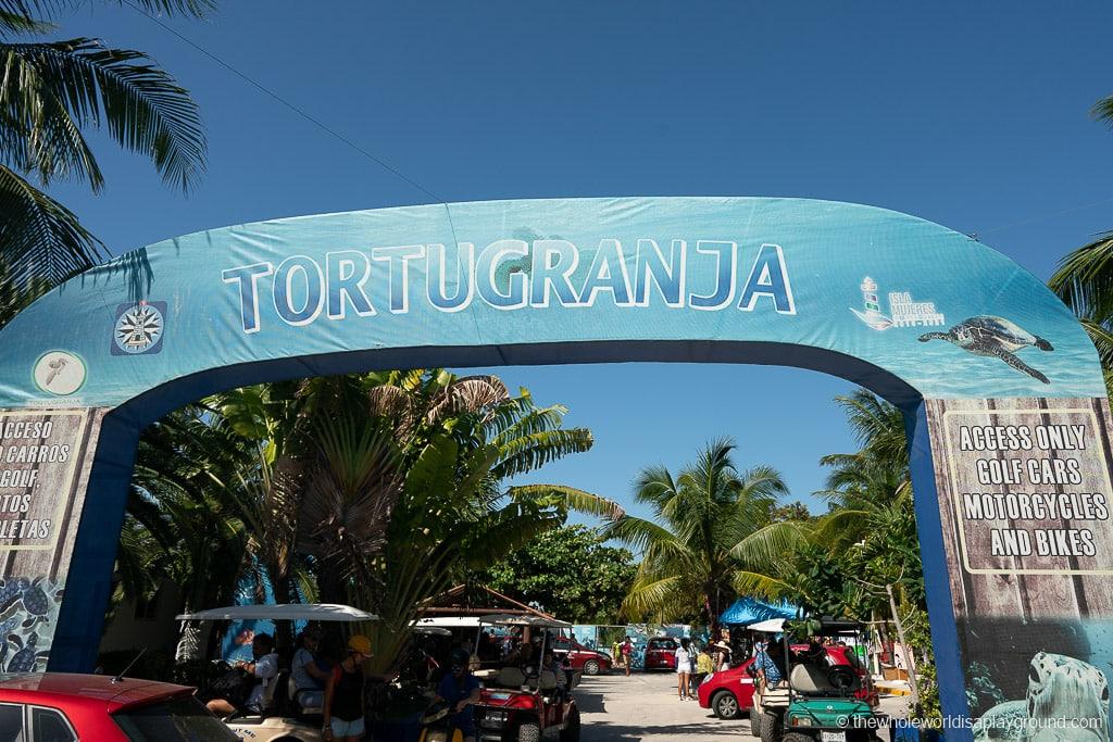 Tortugranja Turtle Sanctuary Isla Mujeres