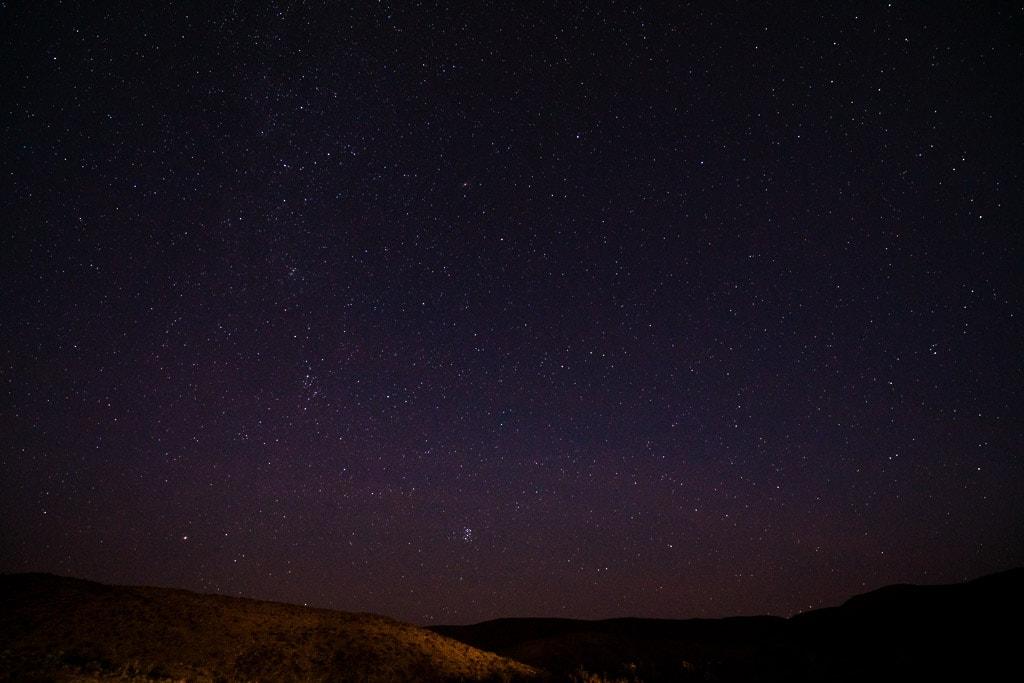 Joshua Tree Stars Night Sky