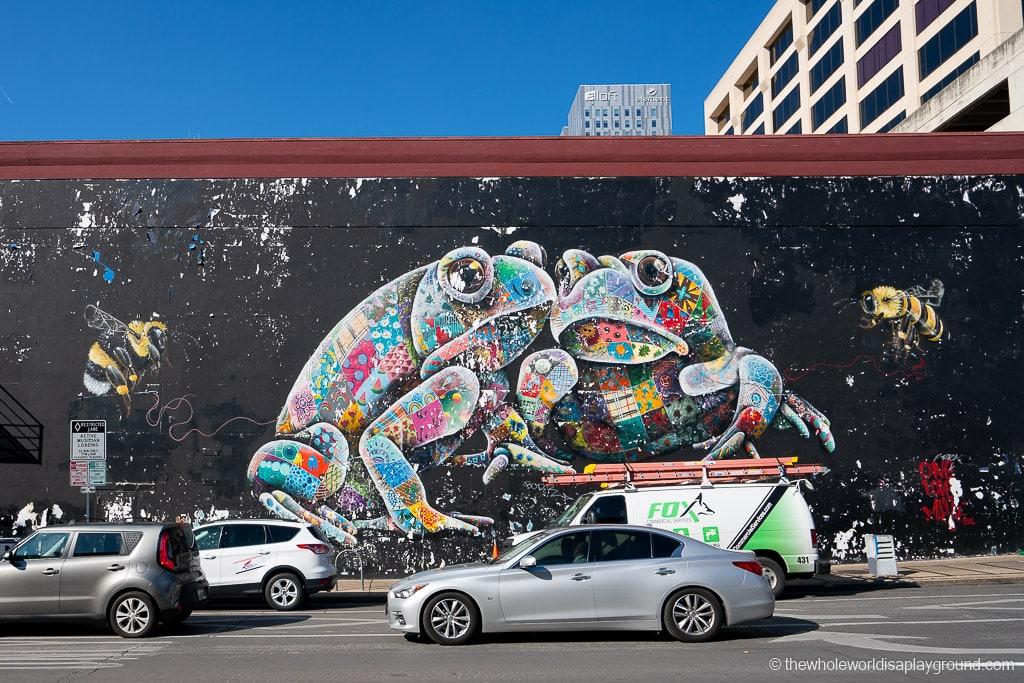 Houston Toad Mural Best Murals in Austin